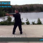 image for blog post 10 form part 3. Tai chi repulse monkey.